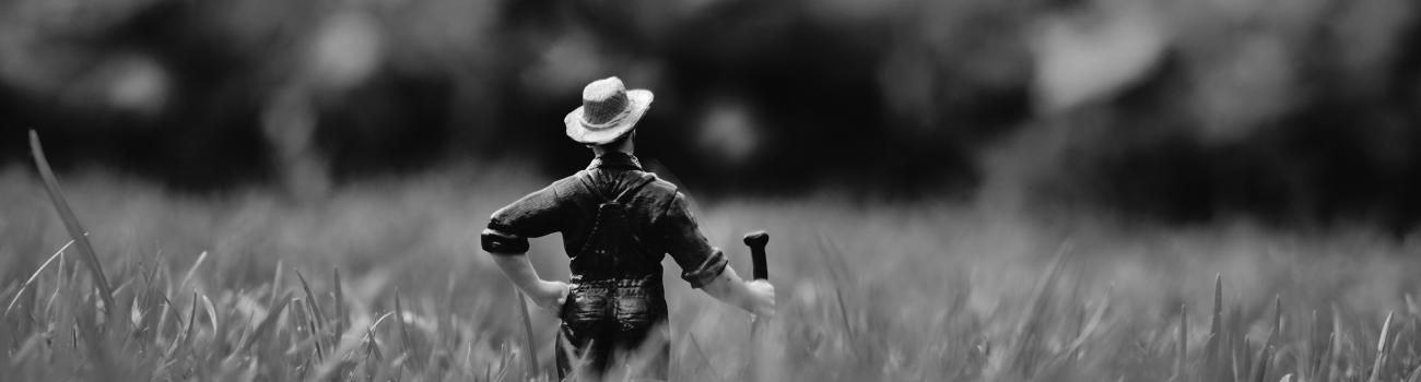 Banner image of a toy farmer in the weeds